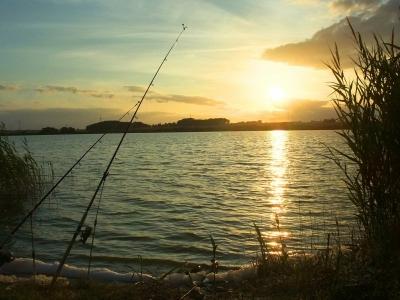 Rybárske prúty
